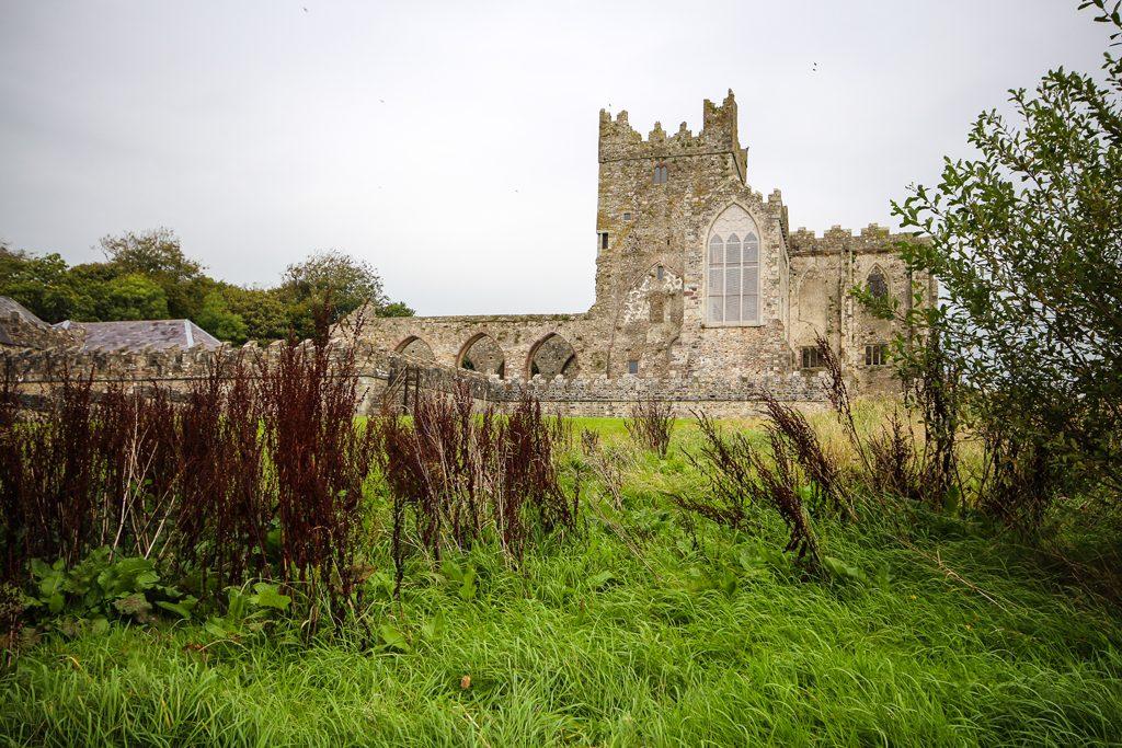 Irlande-TinternAbbey-1-9