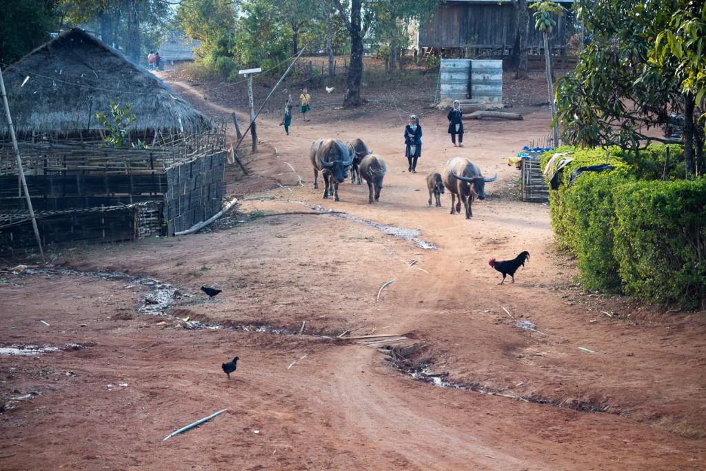 Myanmar-Kengtung-1-186