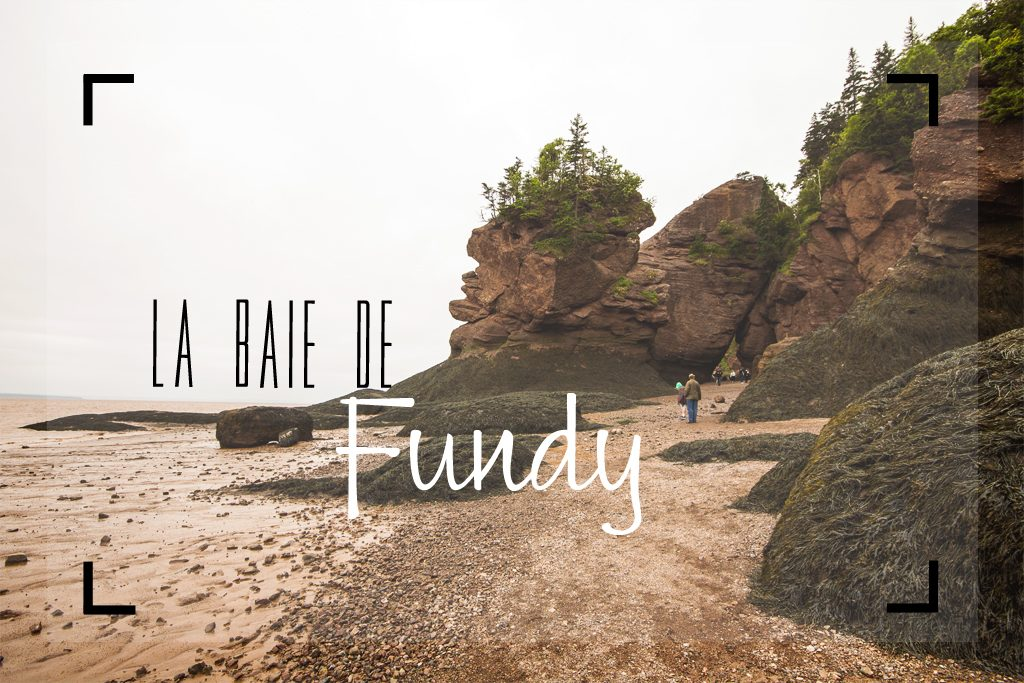 Canada-Fundy-Cover