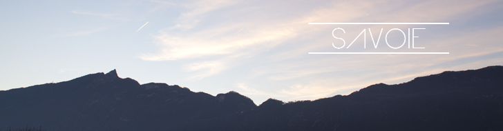 Bannière Pays-Savoie